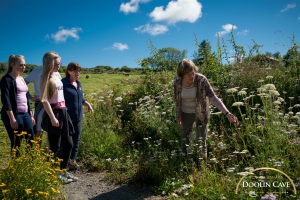 Doolin Cave guided nature trail walk 4