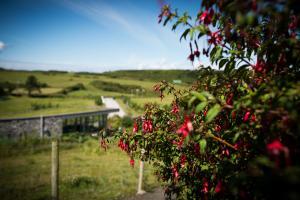 Doolin Cave Farmland Nature Trail